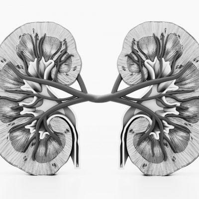 Nephrology Oct 2021